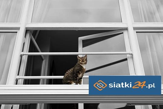 Zabezpieczenie przed upadkiem kota