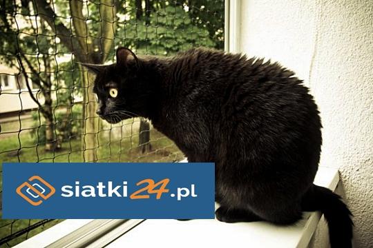 Siatka dla kota - chroniąca przed wypadnięciem z balkonu